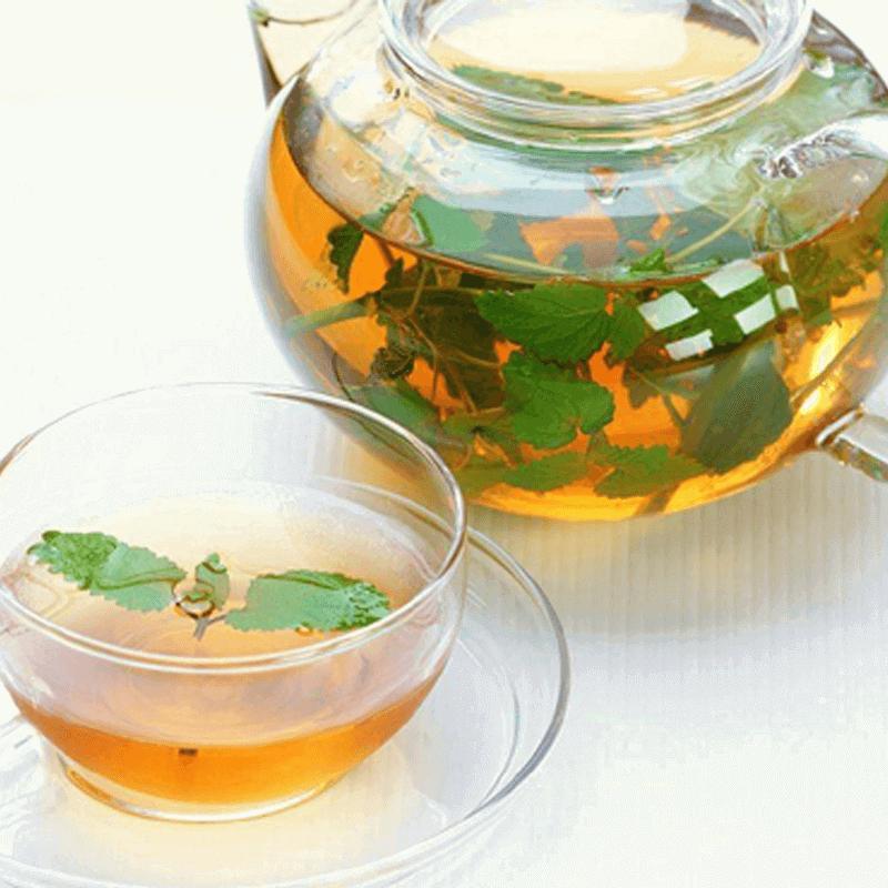 金银花薄荷茶